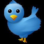 Argentina en la nueva arena política: Twitter