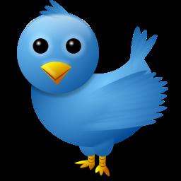 Argentina en la nueva arena política Twitter