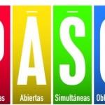 Una fuerte apuesta a la institucionalización democrática: las PASO