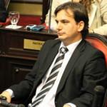 """Galmarini: """"Hay cambios urgentes que realizar para garantizar mayor transparencia"""""""