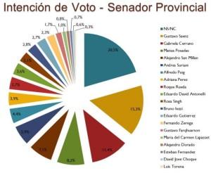 nota-964096-intencion-votos-para-senador-provincial-131001052446
